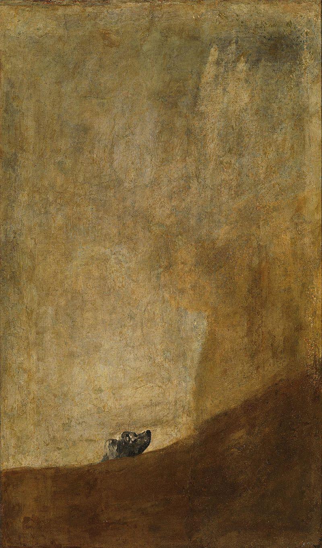 Goya, Pies