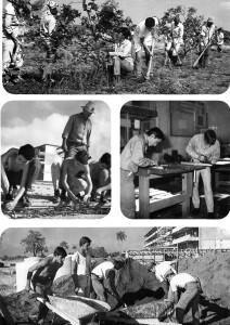 """La Educación en Revolución (Instituto Cubano del Libro, Hawana 1974), z Werker 2 – Historia mówiona młodego robotnika, 2016. Dzięki uprzejmości """"Werker Magazine"""""""