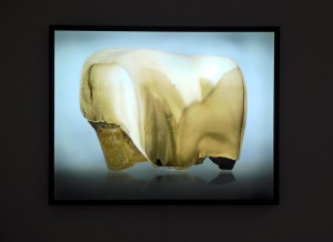 """Ewa Axelrad, """"Is it Safe"""", 2011-2012, z wystawy pt. """"Bogactwo"""", Narodowa Zachęta Sztuki, fot. NOM"""