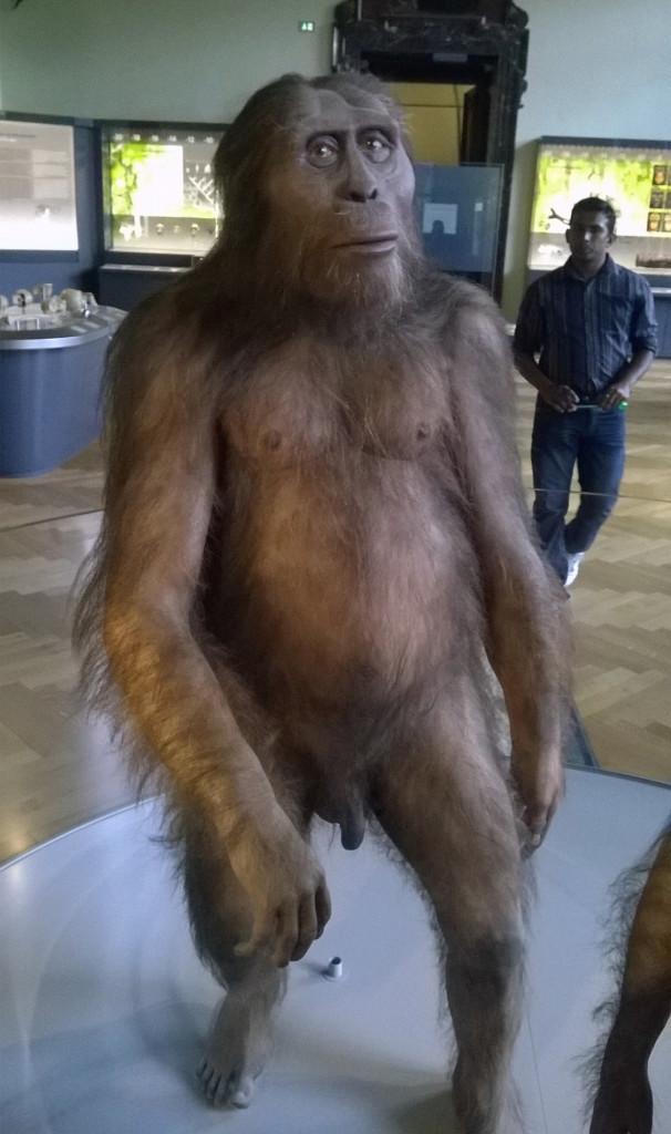 Muzeum Historii Naturalnej w Wiedniu, fot. Grażyna Smalej