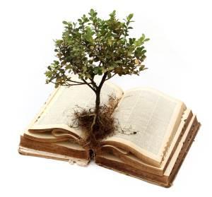 education-tree